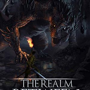 The Realm Between: Two Brothers: A LitRPG Saga (Book 2)