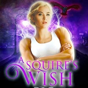 A Squire's Wish: A GameLit novel (Hidden Wishes Book 2)